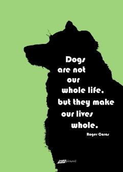 Dog Silhouette on green background with inspirational text/quote